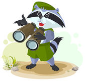 Scout raccoon with binoculars Royalty Free Stock Photo