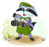Scout raccoon with camera Royalty Free Stock Images