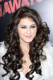 Scout Taylor Compton Royalty Free Stock Image