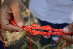 Scout is tying the the reef knot & x28;Square Knot& x29; stock photo