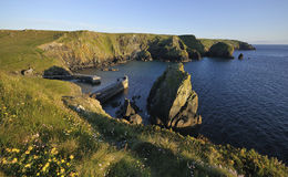 Scovarn Rock, Mullion Cove Royalty Free Stock Photo