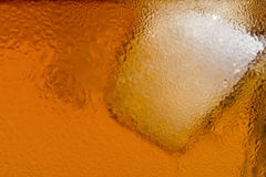 Scozzese, un cubo di ghiaccio Fotografie Stock Libere da Diritti