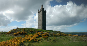 Scrabo tower Stock Image