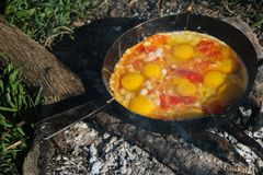 Scrambled egg fried on coals in pan on open fire, cook over an open fire Royalty Free Stock Images