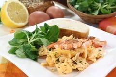 Scrambled egg with shrimp Stock Image