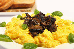 Scrambled egg side view Stock Image