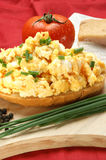 scrambled egg on a slice of bread Royalty Free Stock Image