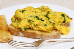 Scrambled egg with spinach Royalty Free Stock Photos