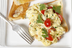 Scrambled egg and tomatoes from above Royalty Free Stock Photography