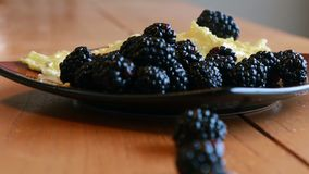 Scrambled eggs and blackberries royalty free stock photos