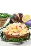 Scrambled eggs with dill and shrimp Royalty Free Stock Photos