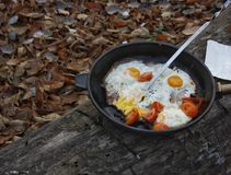 Scrambled eggs in a frying pan on a background of foliage.  Royalty Free Stock Photo