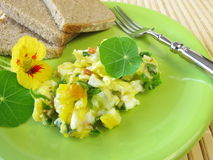 Scrambled eggs with herbs Royalty Free Stock Image