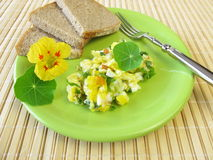 Scrambled eggs with herbs Royalty Free Stock Photography