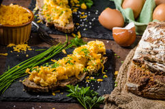 Scrambled eggs with herbs Royalty Free Stock Photos