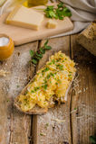 Scrambled eggs on homemade bread Royalty Free Stock Image