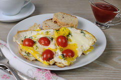 Scrambled eggs with tomatoes Royalty Free Stock Photos