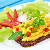 Scrambled eggs and whole-grain bread Royalty Free Stock Photos