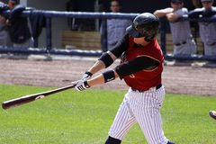 Scranton Wilkes Barre Railriders' Dan Johnson Stock Photos