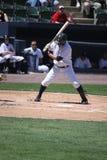 Scranton Wilkes Barre Yankees batter Luis Nunez. Bats Royalty Free Stock Photography