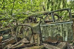 Scrap car  in the  woods Royalty Free Stock Images