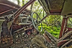 Scrap car  in the  woods Stock Photo