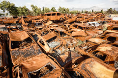 Scrap cars. A lot of used cars in the junkyard Stock Image