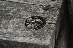 Scrap wood Royalty Free Stock Image