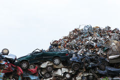 Scrap yard with crushed cars Stock Image