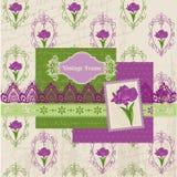 Scrapbook Design Elements - Iris Flowers Stock Photo