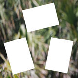 Scrapbook Grungy Green Background Stock Photography