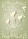 scrapbooking花卉背景的典雅的光 免版税库存图片