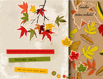 Scrapbooking set about autumn. Stock Image