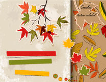 Scrapbooking set about autumn. Royalty Free Stock Image