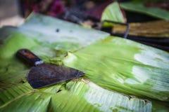 Scraper on banana leaves Stock Photos
