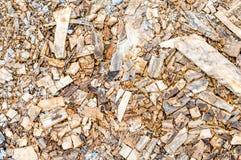 Scraper spokeshave sapele exotic hardwood Royalty Free Stock Image