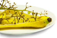 Scraps on a plate. Scraps on a white plate: a peel of a banana and grapes branch Stock Photography