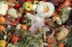 Scraps of rotten fruit and vegetables used as manure in an farm Stock Image