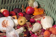 Scraps of rotten fruit and vegetables Stock Photo