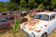 Scrapyard with vintage cars Stock Photography