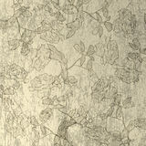 Scratch abstract background with floral Royalty Free Stock Images