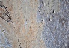Scratch e sbucciatura di legno Fotografia Stock Libera da Diritti