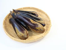 A scratch eggplant Stock Image