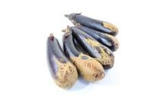 A scratch eggplant Stock Photos