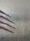 Scratched background with beast claws marks Royalty Free Stock Photography