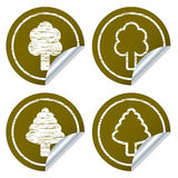 Scratched eco stickers Stock Images