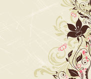 Scratched floral background Royalty Free Stock Photo