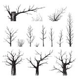 Scratchy Trees Collection in Black Silhouettes Royalty Free Stock Image