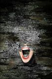 Scream Royalty Free Stock Photos