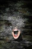 Scream royalty free stock photos